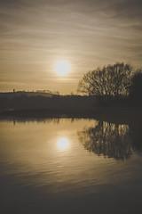 Dezemberabend (clearfotografie) Tags: nikon nature natur d600 deutschland landschaft landscapes afsnikkor50mm118g