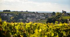 St Emilion (baptiste.mesnier) Tags: vigne saintémilion émilion bordeaux vin wine
