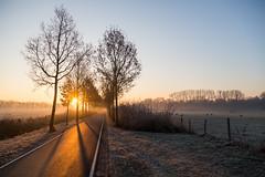Good morning winter! (Bart Weerdenburg) Tags: december utrecht winter cold morning sun sunrise chill fog mist uithof chilly kou fietspad bikelane nederland netherlands holland
