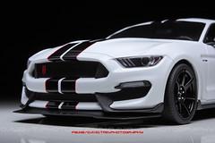 Sharp - Ford Mustang Shelby GT350R - GT Spirit 1/18 (David.T Photography) Tags: ford mustang shelby gt350r gtspirit 118 canoneos350d 55250 1855 50mm modelcar miniature modellauto