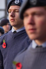 Remembrance Sunday, Canterbury, 13 Nov 2016 (chrisjohnbeckett) Tags: portrait poppy red remembrancesunday canterbury canonef135mmf2lusm chrisbeckett youth street atc global photojournalism beret