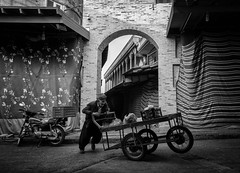 Pushing cart (Saman A. Ali) Tags: street streetphotography streetlife lifestyle dailylife documentary blackwhite bw people man