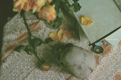 * (Wolf's kurai) Tags: wolfskurai canon photography stilllife vanitas roses death love skul languageofflowers