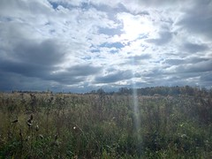 horizon (Gjabu) Tags:  autumn        nature landscape field horizon sky clouds sun