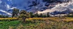 IMG_0667-71Ptzl1TBbLGE (ultravivid imaging) Tags: ultravividimaging ultra vivid imaging ultravivid colorful canon canon5dmk2 farm fields stormclouds sunsetclouds scenic rural rainyday vista autumn autumncolors