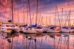 Golden hour at the harbor (bodro) Tags: sandiego shelter dramaticsky earlymorning refllection shelterisland sunrise yachts