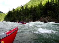 On the River (Stefan Jrgensen) Tags: rapids rafting river clearwater clearwaterriver wellsgrayprovincialpark britishcolumbia canada water trees sony dsctx20 tx20 2013