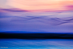 birds in flight over water at sunset (Vicki Mullet) Tags: intentionalcameramovement lakewashington icm water birds movement sunset slowshutter seattle abstract longexposure fineart