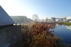 20161204 03 Groningen - Oosterhamrikkade (jack_of_hearts_398) Tags: 2016 winter nederland netherlands niederlande groningen stad oosterhamrikkade