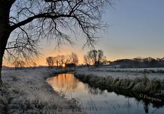 Morgenlicht................... (petra.foto on/off) Tags: canon fotopetra 5dmarkiii morgens frh sonnenaufgang landschaft frost frostig trave flus morgenstimmung reflexion norddeutschland germany sonnenlicht nature