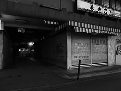 Pub Yoro Falls/Fruit Shop Iwanami (MEG/TYO) Tags: tama tokyo japan blackandwhite bw olympus xz10 night street city