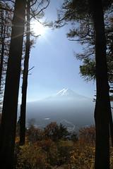 IMG_8856a (Junio006) Tags: mountfuji fuji yamanashi nature landscape