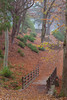 Beaumont Park 1 (RD400e) Tags: canon eos 5d mk3 24105mm f4l beaumont park huddersfield trees leaves fog mist