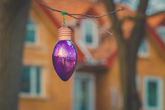 Purple (A Great Capture) Tags: agreatcapture agc wwwagreatcapturecom adjm ash2276 ashleylduffus ald mobilejay jamesmitchell toronto on ontario canada canadian photographer northamerica fall autumn automne herbst 2016 torontoexplore christmas ornament outdoors outside beaches decor decoration branch