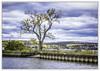 Newburgh Beacon Bridge (jsleighton) Tags: hudson river bridge newburgh beacon tree park sky