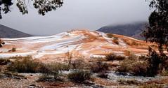 Naâma Algeria - The snow into the desert (menos007) Tags: ولاية النعامة الجزائر الطبيعة الثلج الصحراء