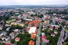 I Liceum Ogólnokształcące im. Króla Władysława Jagiełły w Dębicy