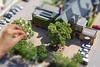 Origami Blooming Mini Bonsai Garden (explored!)
