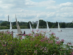 Sailing Regatta 088