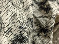 (Emmanuel Cattier -) Tags: canon6d obj1740 naturemorte stillnature stilllife tissus chemise polo trame textile shirt frame cattier emmanuelcattier manusoft oeiletlumière oeillumière