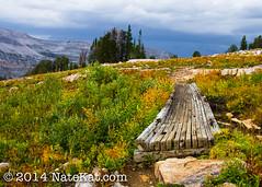 20130917-IMG_1647.jpg (NateKat Photography) Tags: bridge storm hiking backpacking wyoming weatheredwood darkclouds grandtetonnationalpark alaskabasin tetoncresttrail canon7d