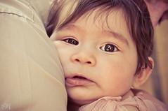 Sticking within the comfort zone. (Missie Ann) Tags: family portrait baby love children eyes toddler child houston childseyes