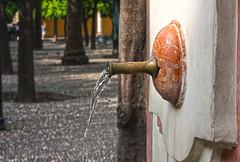 Fonteine (giloudim) Tags: canon eau arbres espagne fontaine cordoue