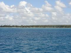 DSC00881 (Freshtampico) Tags: sun beach strand palms paradise dominicanrepublic tropical sonne bayahibe palmen caribbeansea paradies dominikanischerepublik karibischesmeer inselsaona