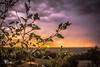 Sweet Twilight (Chains of Pace) Tags: sunset storm oklahoma clouds landscape unitedstates bokeh guymon cloudsstormssunsetssunrises