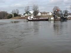 Ferry 04 11 2013 V McLatchy