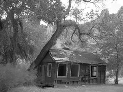 Forgotten (Spork Outdoors) Tags: trees arizona mountains abandoned cabin alone desert empty forgotten lonely desolate