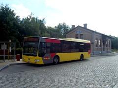558145-205330 (VDKphotos) Tags: mercedes belgium autobus wallonie citaro ramillies srwt o530 tec4 autobuslatour