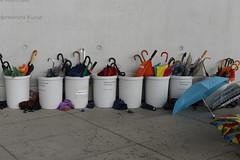 umbrella stands (horstg1) Tags: umbrellas
