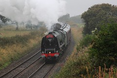 46233 'Duchess of Sutherland' powers up the 1 in 101 Hoghton bank with RTC 'Cumbrian Mountain Express' through very heavy rain on 6th September 2014 © (steamdriver12) Tags: mountain west heritage coast smoke main bank railway steam lancashire line company express sutherland railways touring rtc duchess hoghton cumbrian 46233