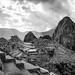 Macchu Picchu B&W