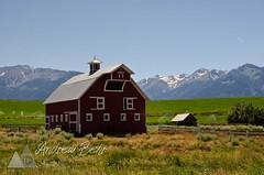 Joseph, Oregon Gateway to the Wallowas (Andrew Behr) Tags: ranch mountains nature oregon joseph landscapes scenery farm scenic pacificnorthwest agriculture chiefjoseph wallowas easternoregon wallowalake