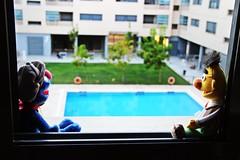 Quieres contarme algo? (jcmejia_acera) Tags: friends amigos ventana rboles puppet piscina patio swimmingpool coco mueco casas epi vecindario compaa barriosesamo contemplar alfeizar