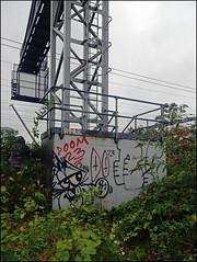 (Alex Ellison) Tags: urban graffiti bc boobs horror graff throwup trident trackside throwie burningcandy