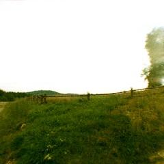 2014 Rabsztyn Castle (DIANA BABY 110) (yerzmyey) Tags: castle film nature xpro lomography 110 lofi slide peacock 16mm rabsztyn yerzmyey