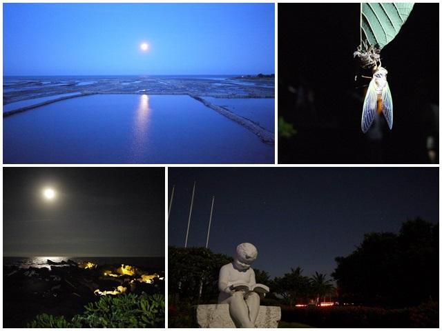 台東旅遊景點夜訪小野柳釋迦冰淇淋page