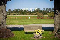 Close to city (Hkan Dahlstrm) Tags: city bench se skne sweden sverige f80 uncropped malm grd 2014 skneln katrinetorp canoneos5dmarkii almvik sek ef2880mmf284lusm katrinetorps 11106092014135003
