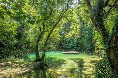 """small lake in national park Krka in Croatia • <a style=""""font-size:0.8em;"""" href=""""http://www.flickr.com/photos/125767964@N08/15166342181/"""" target=""""_blank"""">View on Flickr</a>"""