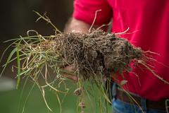 Anglų lietuvių žodynas. Žodis agronomist reiškia n agronomas lietuviškai.