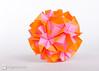 Origami Sonobe (Maria Sinayskaya) Tags: origami folded 10010 modularorigami kusudama sonobe mariasinayskaya мариясинайская rectangle12 kamipaperduocolorcolor 15cmdoublesided daiyoshiko