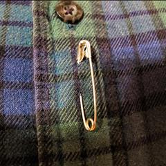 Safety pin (Maine Islander) Tags: solidarity