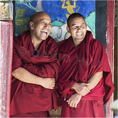 Monks' Mirth (channel packet) Tags: india ladakh leh thicksey monks holy laughter red robes buddhism davidhill