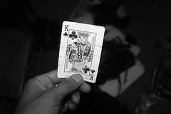 King Stuff~ 10/19/2016 #day296 #day296of365 #365dayproject #pictureoftheday #everydaystuff #pnw #Eugene #oregon #128 (Yusuf Ali Muhammad) Tags: everydaystuff oregon 128 day296of365 pnw pictureoftheday eugene 365dayproject day296