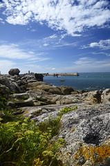 Port de Trvigon (Laura Carrier) Tags: bretagne nikon d7000 photographie photography photo france nature trvignon port de finistre