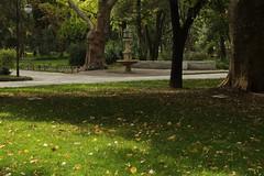 Tsar-Simeonova gradina, Plovdiv (nikolaylozanov8006) Tags: outdoor plant tree park plovdiv yard bulgaria thrace trees grass foutain