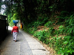 Ubud Walk (lrudzis) Tags: bali indonesia ubud kuta southeastasia travel explore international escape destination mystery island